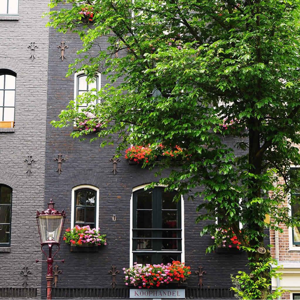 Goedkoopste huurwoningen in Amsterdam